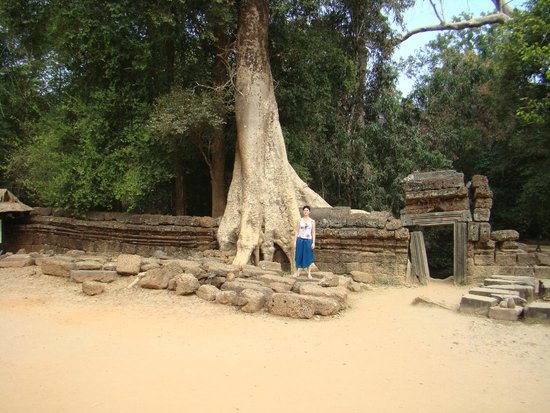 Ta Prohm : возле храма Ангкор Ватт