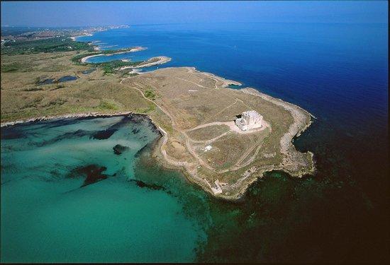 Area Marina Protetta di Torre Guaceto