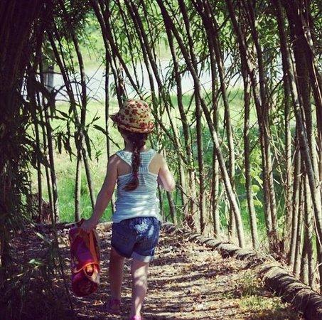 Bluestone National Park Resort: Secret Garden