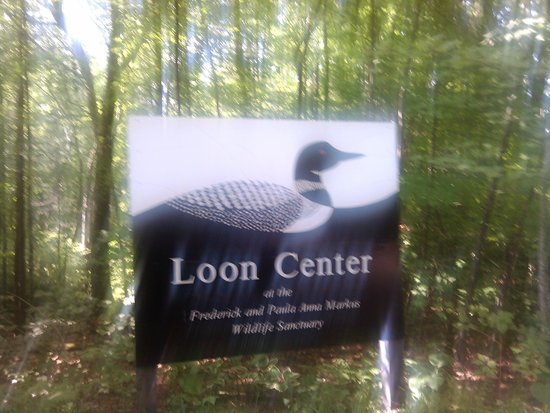 ‪The Loon Center‬