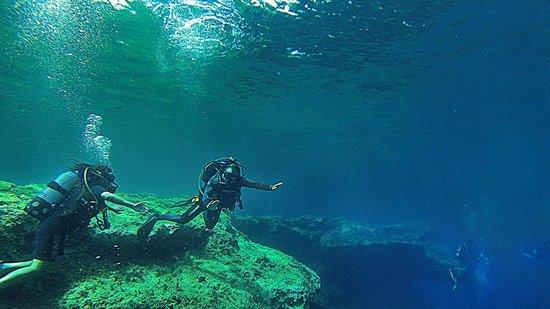 Aquatica: Follow me ...