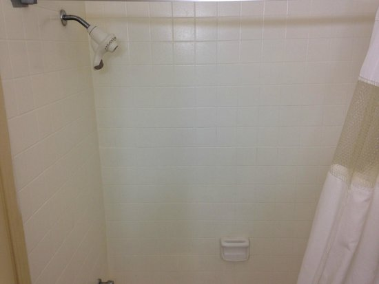 Econo Lodge: nice shower head
