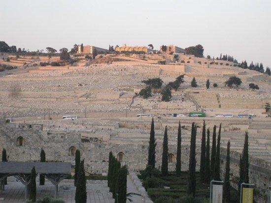 Mount of Olives: Масличная (она же Елеонская) гора