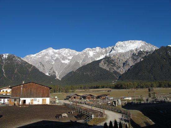 Alpenresort Schwarz: vue de la chambre