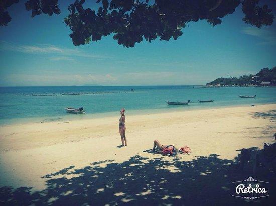Ibiza Bungalow : Наш пляж