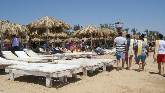 Kahramana Hotel: la spiaggia Viva beach