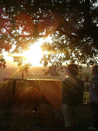 Agriturismo La Casella: Tramonto....con aperitivo sulla collinetta sotto la grande quercia.... Fantastico