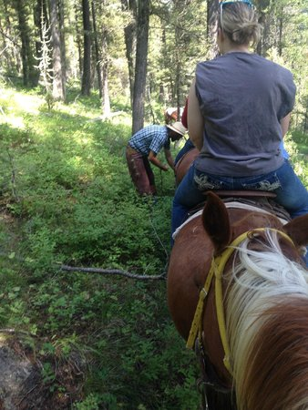 Yellowstone Horses - Eagle Ridge Ranch: Our Guide Picking Us Huckleberries!