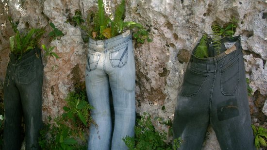 Cardiff Hotel & Spa: denims used as flower pots