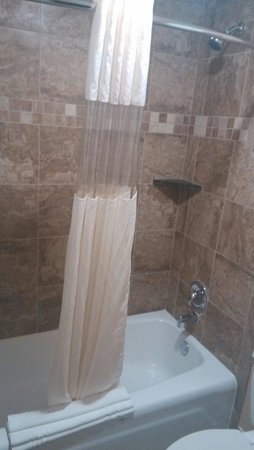 Red Lion Hotel Orlando - Kissimmee Maingate: Baignoire / douche