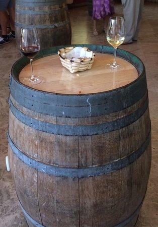 Bodegas Marques de Riscal: Cata de vinos