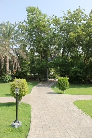 Al Nahda Resort & Spa : The resorts grounds