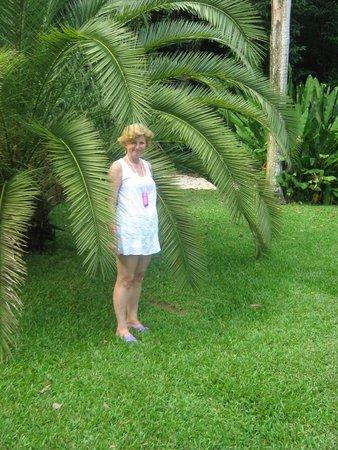 Hotel Riu Palace Jamaica: roślinność