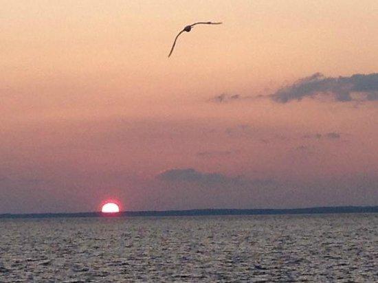 Mariner Inn: Beautiful LBI Sunset!