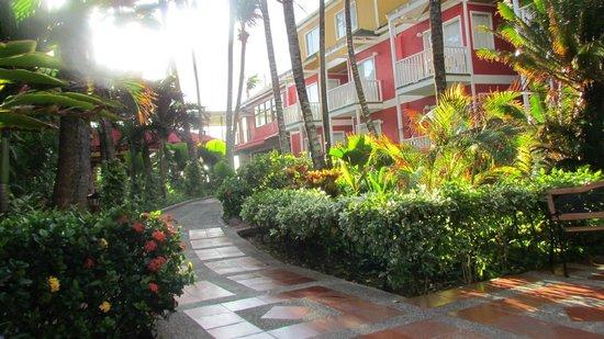 Decameron San Luis: Jardines interiores