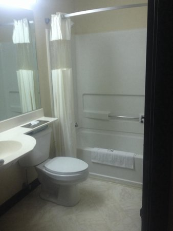 Microtel Inn by Wyndham Bowling Green: Room 105, bathroom small, but clean