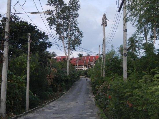 Q Signature Samui Beach Resort: Pothole Central Hill