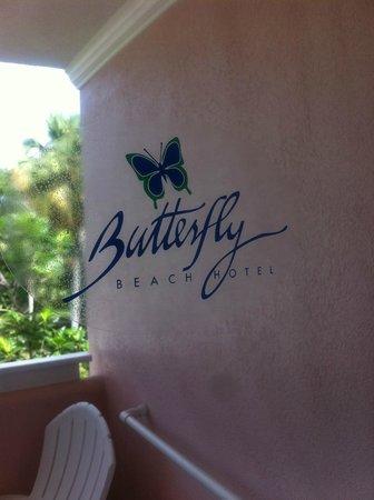Butterfly Beach Hotel: butterfly