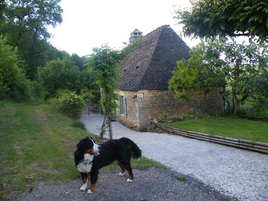 Domaine de la Rhonie : espace très grand pour promenade