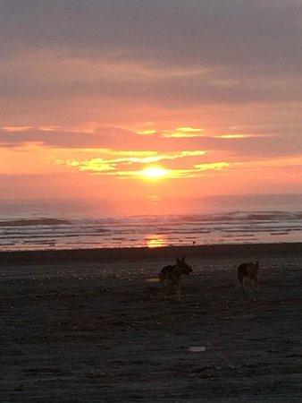 Best Western Lighthouse Suites Inn: Sunset on the beach