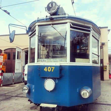 Opicina Tramway: Tram