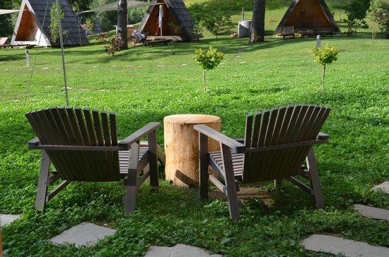Camp Bled: DA CAMERA