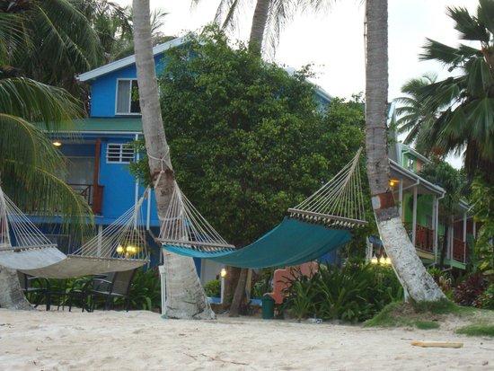 Cocoplum Beach Hotel: el hotel
