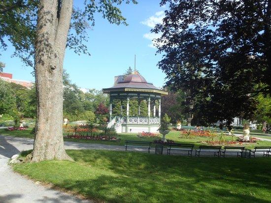 Halifax Public Gardens : Trees