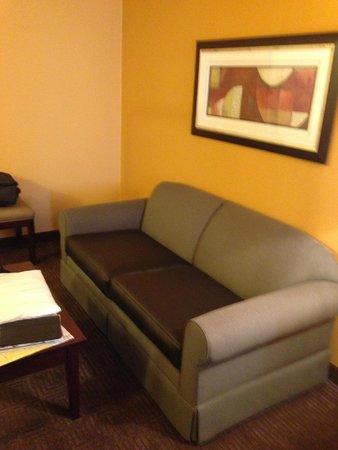 Best Western Plus Vermilion River Suites Hotel : Sleeper sofa