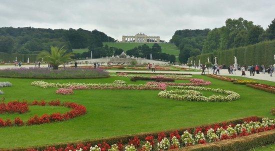 Palacio de Schönbrunn: Looking back from the Schloss
