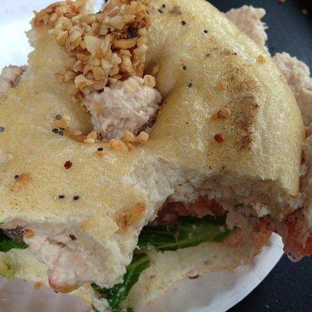Bodo's Bagel Bakery - UVA Corner : That's garlic chunks on the tuna salad