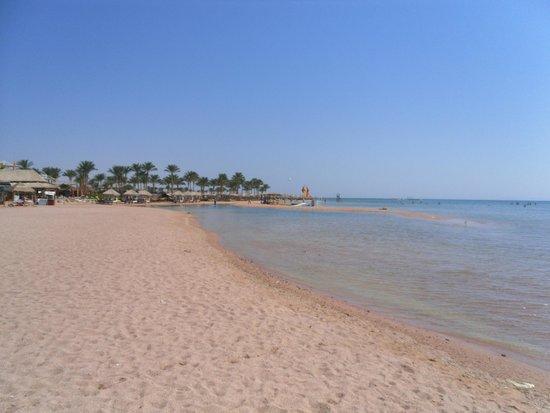Coral Sea Aqua Club Resort: Beautiful Beach (maybe beach shoes a good idea, quite pebbly)