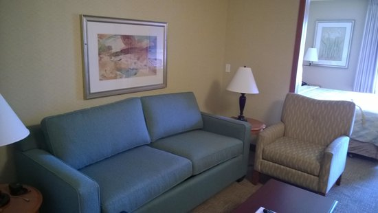 Silver Cloud Inn - University: Suite Sofa - tired....