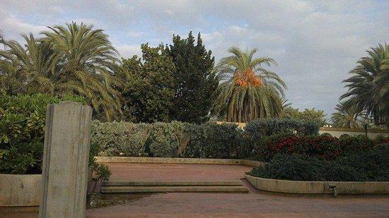 Dunes Hotel & Beach Resort : Green driveway!
