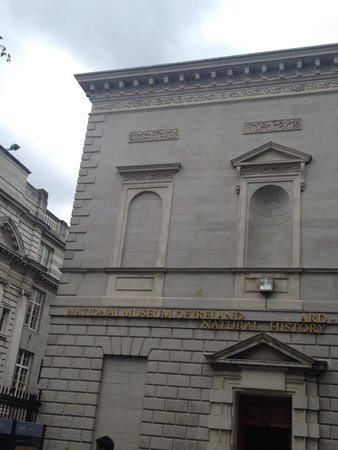 National Museum of Ireland - Natural History : ...