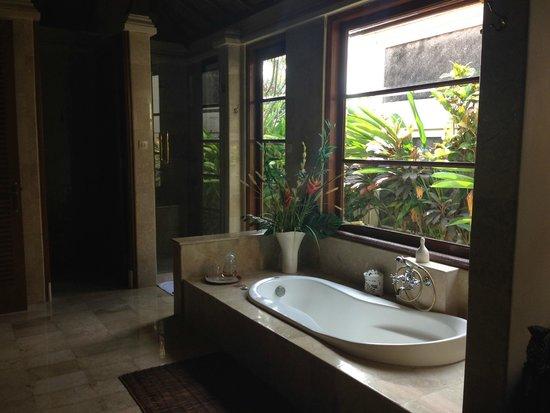 Villa Stefan : Bathroom with small garden in back