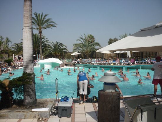 IFA Continental Hotel : Aqua Gym in the Large Pool