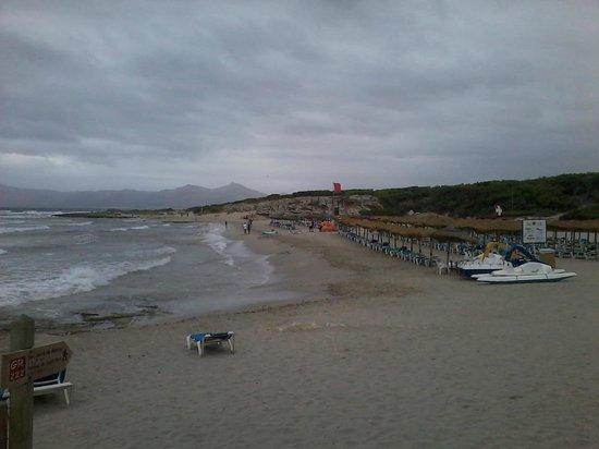 Exagon Park: plage