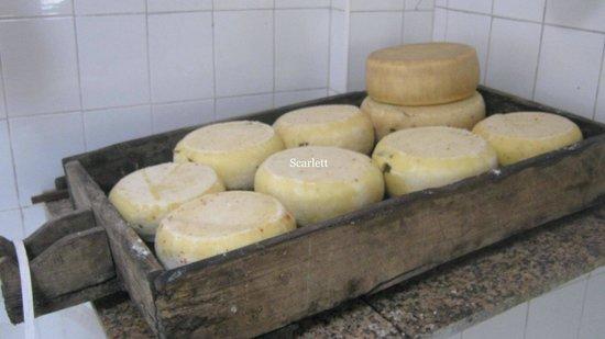 Fattoria Grattazzo : formaggi