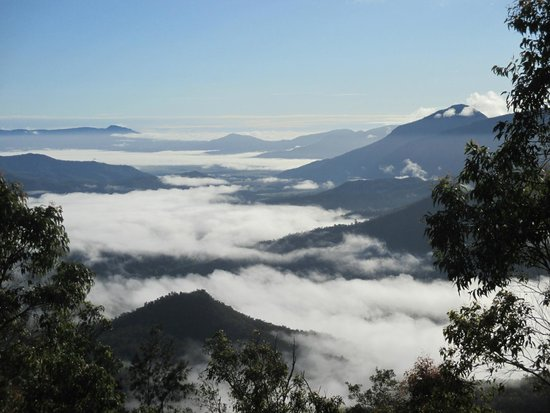 Perentie Tours: View of the Gillies Range from the Gillies Highway