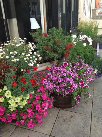 The Peerless Hotel: Our Garden