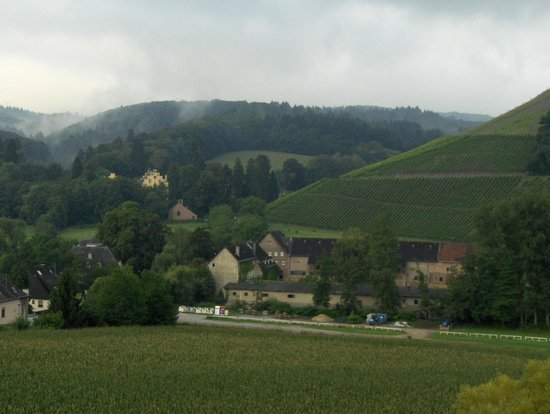 Hotel Weingut Weis : View from balcony