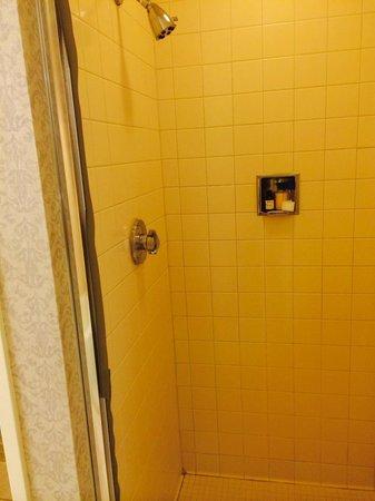 Fairmont San Jose : Old tiled shower/faucet.