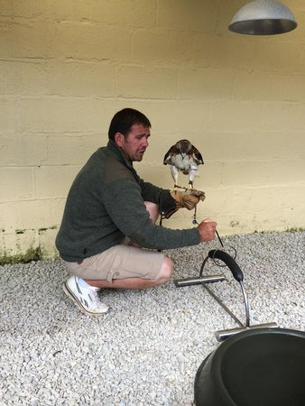 The Cornish Birds of Prey Centre: Andy talking us through how to hold the birds.