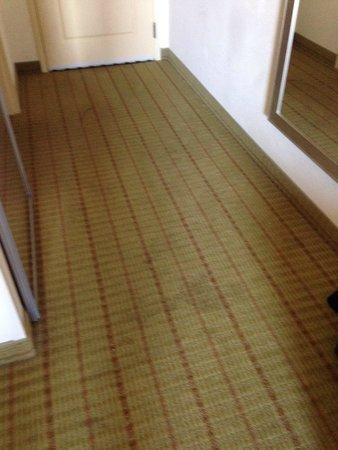 Hampton Inn Ringgold-Ft. Oglethorpe: Carpet