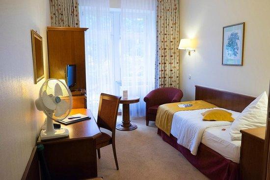 Hotel Holländer Hof: Single Room