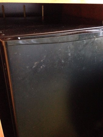 Hampton Inn Ringgold-Ft. Oglethorpe: Refrigerator