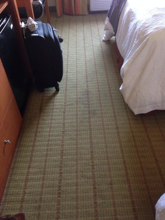 Hampton Inn Ringgold-Ft. Oglethorpe: Another view if the carpet...it was sticky in places.