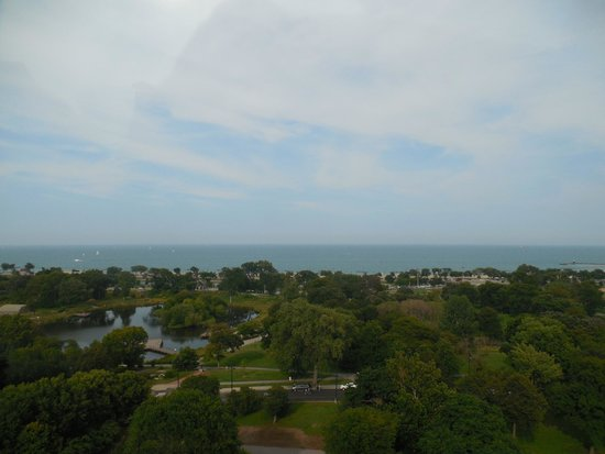 The J. Parker: View of the lake from J Parkers.