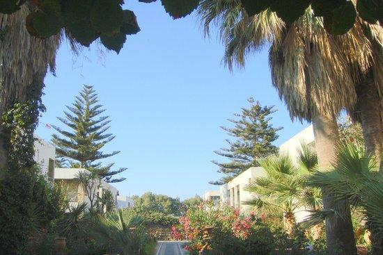 Colymbari Beach Hotel & Apartments: территория